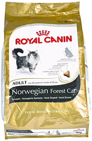 Royal Canin Comida para gatos Bosque De Noruega 10 Kg: Amazon.es: Productos para mascotas