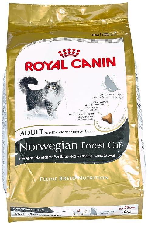 Royal Canin Comida para gatos Bosque De Noruega 10 Kg: Amazon.es ...