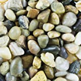 Mini Assorted Garden Beach Stone Rocks Pebbles Aquarium Lake Collection for Outdoor & Indoor Home Garden Decoration, Arts & Crafts Projects, Party Favors, Invitation (1 Pound Bag) by Super Z Outlet
