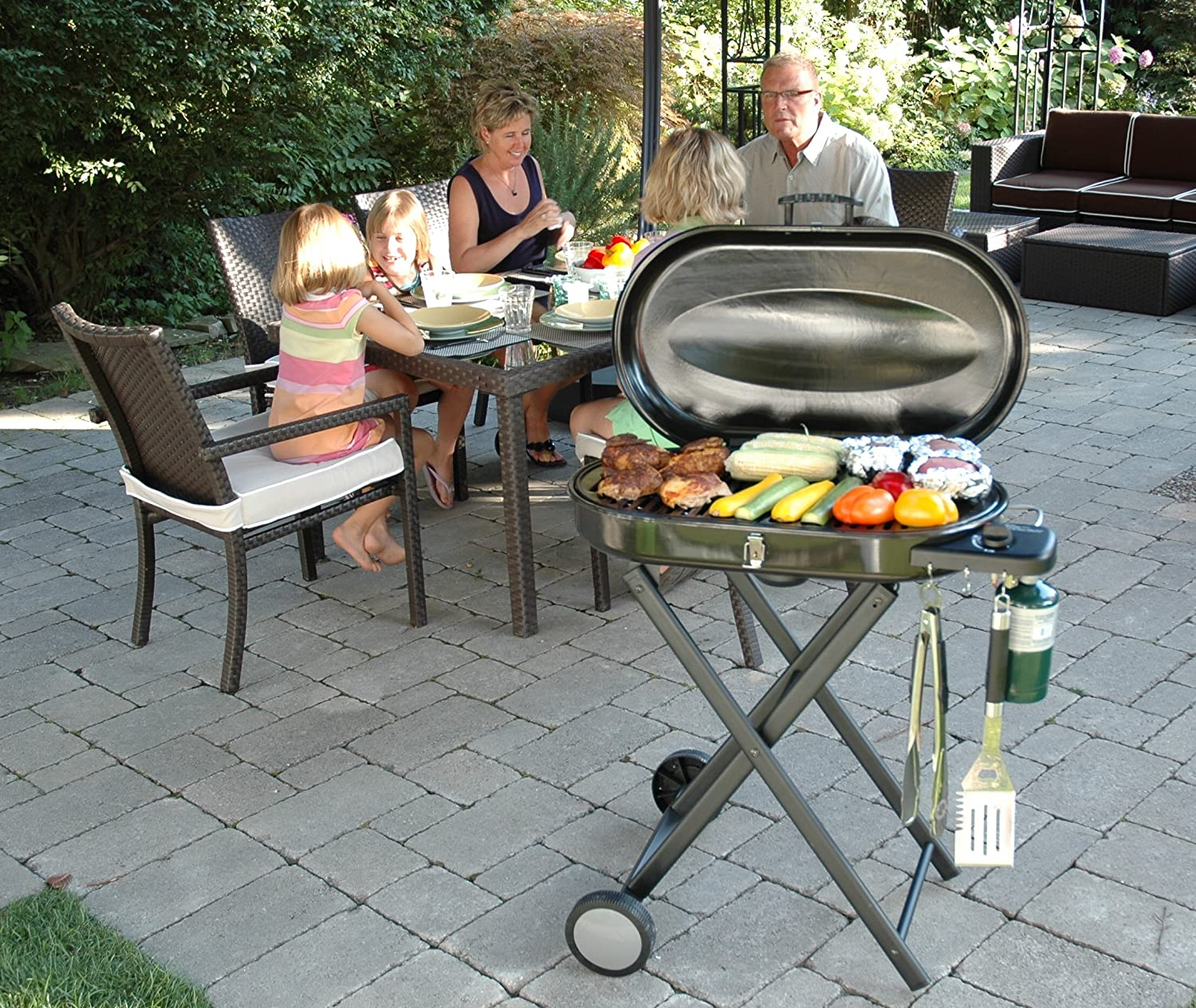 Amazon.com : Cuisinart CGG 440 Portable Gas Grill With Rolling Cart :  Freestanding Grills : Garden U0026 Outdoor