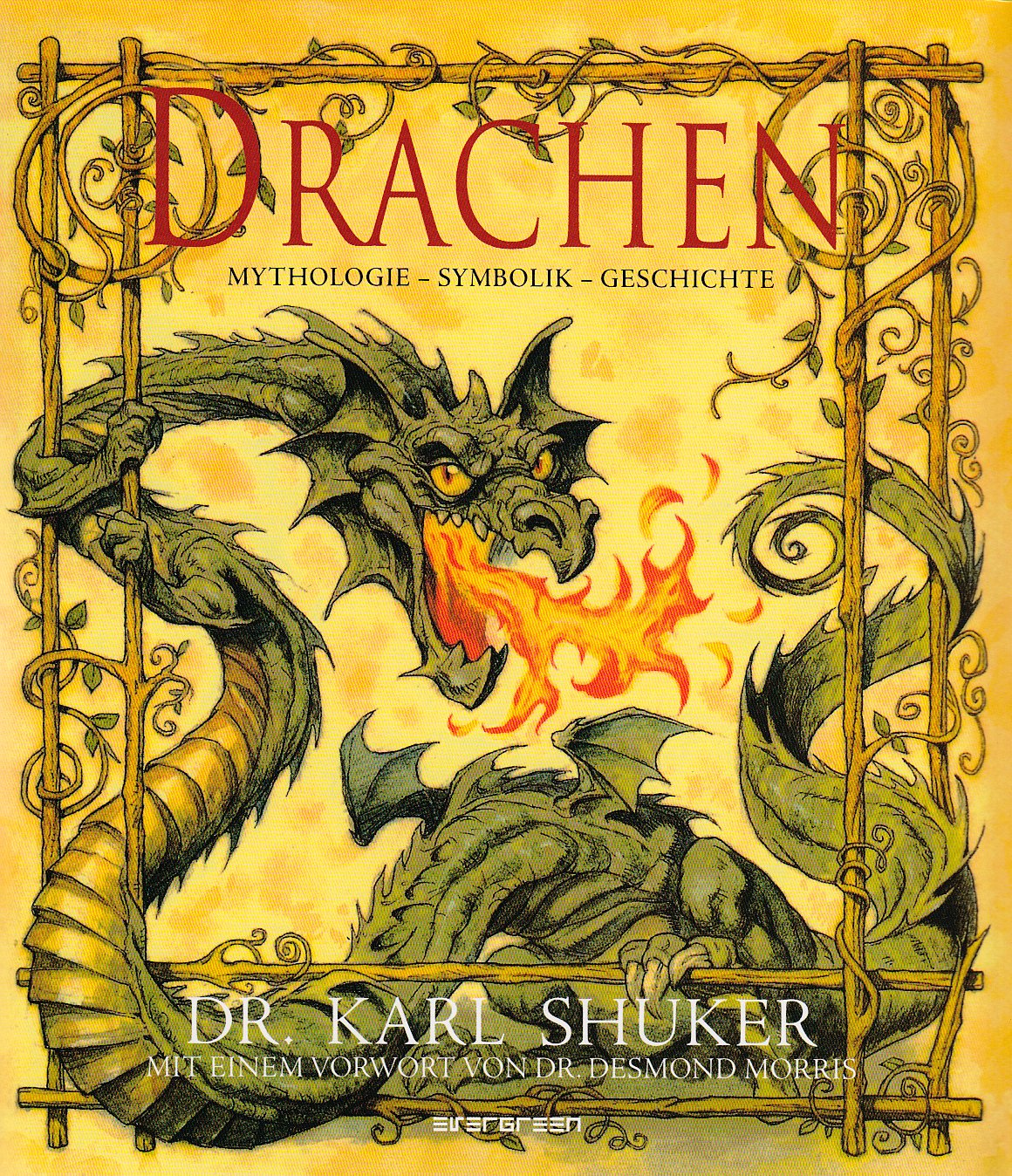 Drachen. Mythologie - Symbolik - Geschichte
