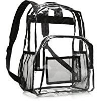 AmazonBasics School Backpack, Clear