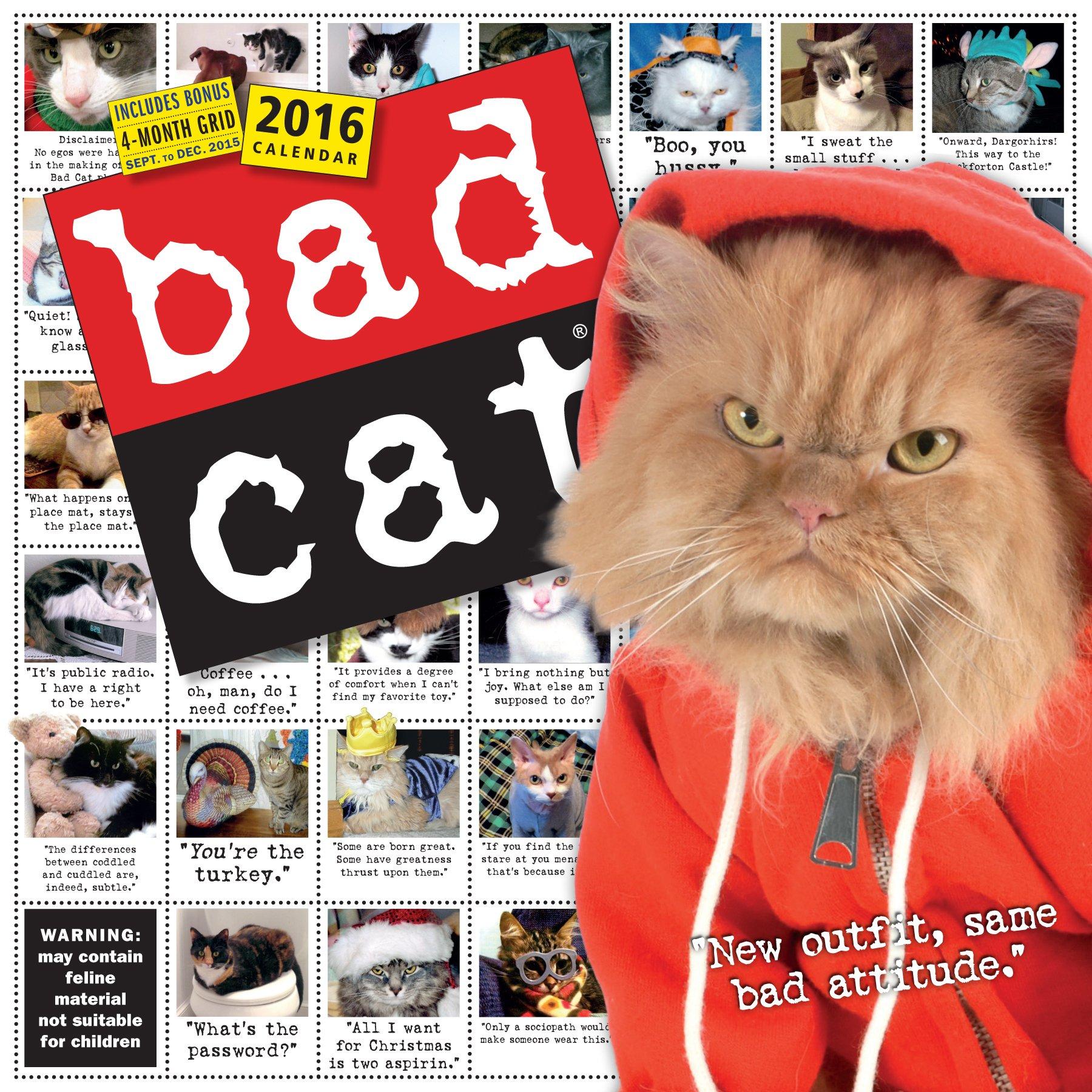 Read Online Bad Cat Wall Calendar 2016 ebook