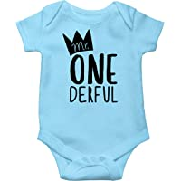 Olive Loves Apple Mr One-Derful Baby Boys 1st Birthday Bodysuit First Birthday Outfit for Boys