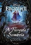 Frozen 2 – A Floresta Sombria