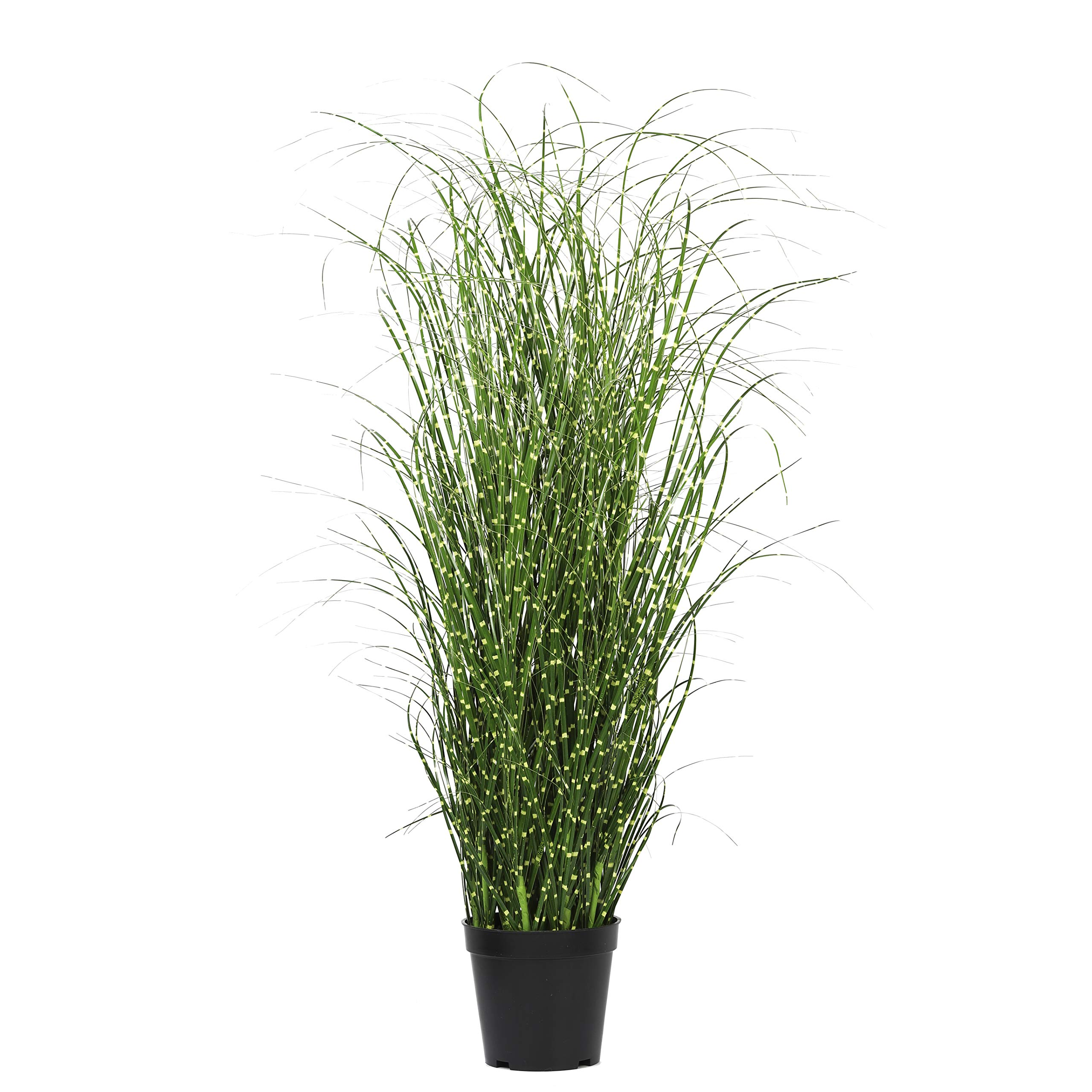 NCYP 31.4'' Large Fake Potted Tall Artificial Dwarf Zebra Grass Natural Looking Faux Silvergrass Morning Light,Ornamental Plant,for Home Office Floor Decor Gift by NCYP