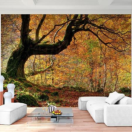Vlies Wand Tapete Wohnzimmer Schlafzimmer B/üro Flur Dekoration Wandbilder XXL Moderne Wanddeko 100/% MADE IN GERMANY Fototapete Wald 9326010a