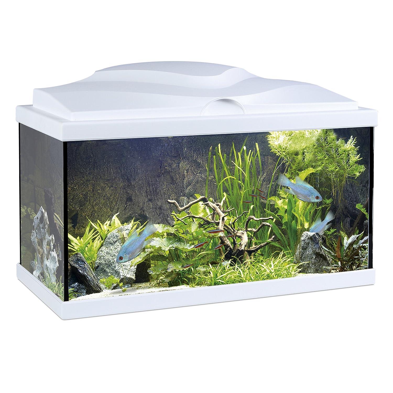 Askoll Aqua - Acuario 60 blanco 60 x 30 x 41 h con lámpara calentador y filtro: Amazon.es: Hogar