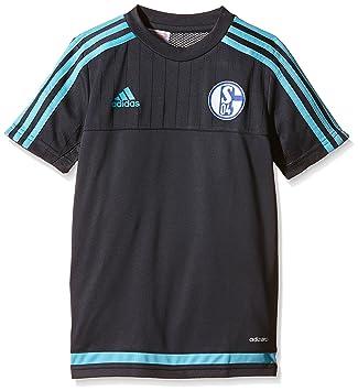 Adidas Chicos Manga Corta Camiseta FC Schalke 04 Entrenamiento - Noche Gris/Super Cyan S12, 176: Amazon.es: Deportes y aire libre
