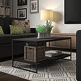 Modern Large Rectangular Coffee Table (Brown)