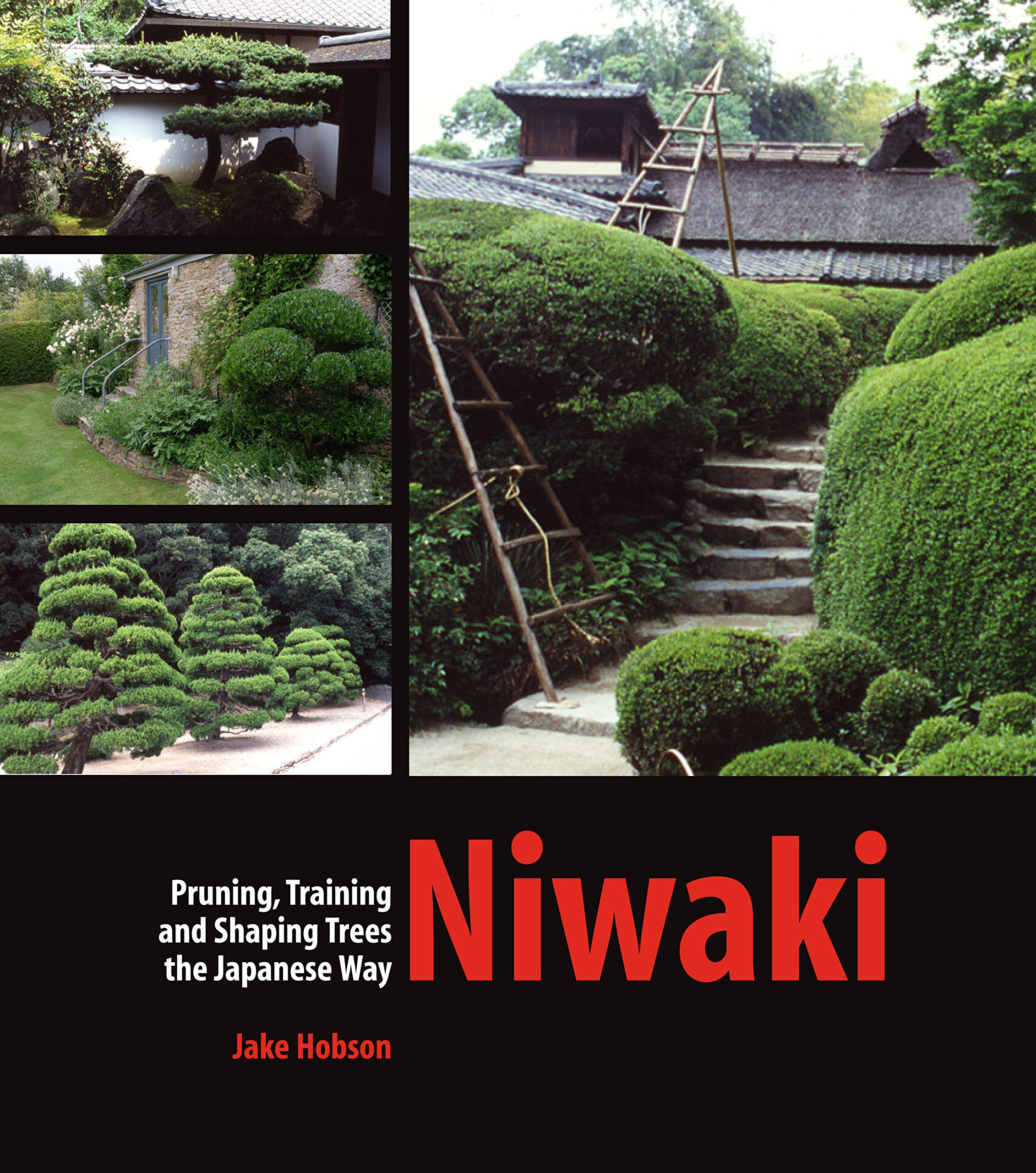 Niwaki Pruning Training And Shaping Trees The Japanese Way