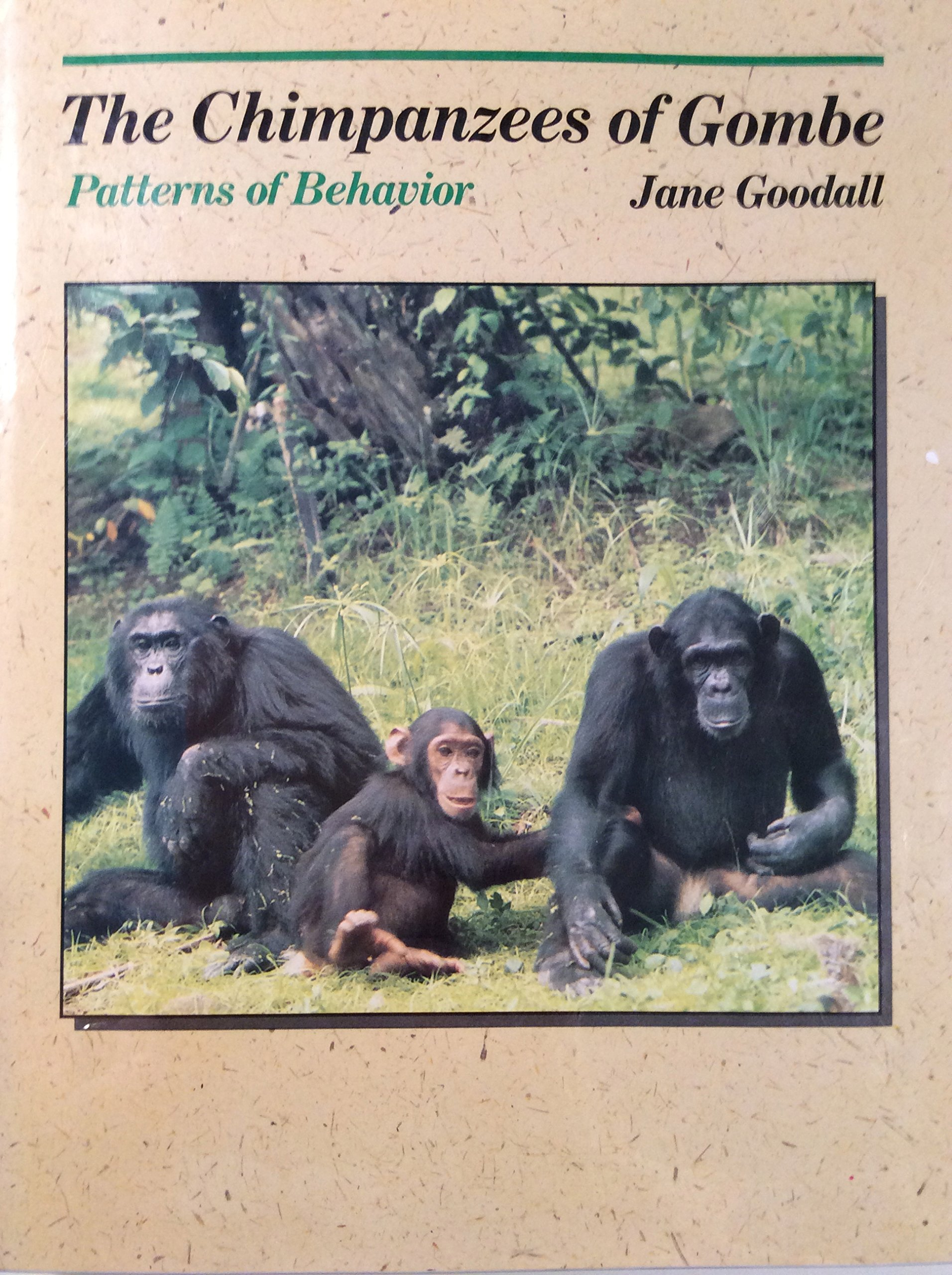 a paper on the behavior of chimpanzees Are chimpanzees naturally violent or is chimpanzee violence the result of human interference, such as artificial feeding or habitat loss along with 29 co-authors, i examine this question in a paper published this week in nature jane goodall writes in her magnum opus, the chimpanzees of gombe: early field studies of chimpanzees.