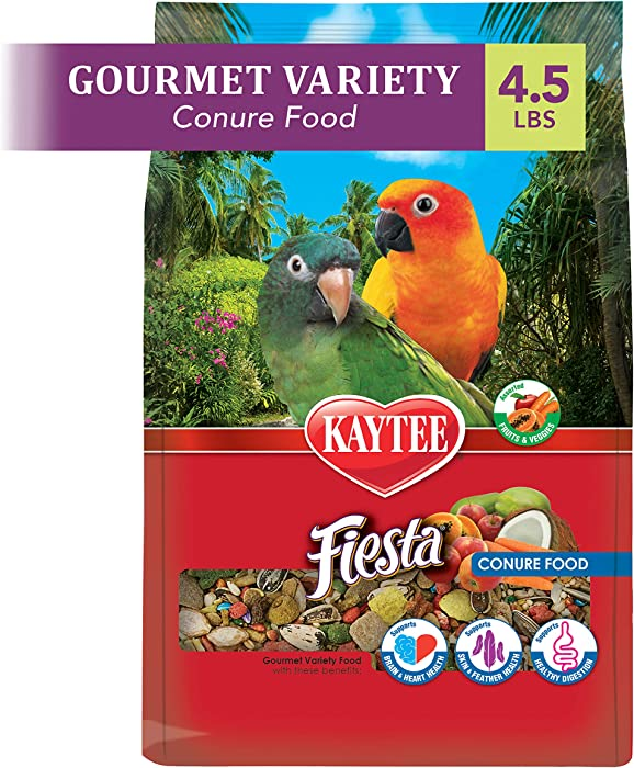The Best Bird Food For Conures