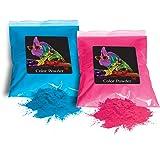 Chameleon Colors Holi Color Powder 1lb Pink and 1lb True Blue (Gender Reveal)
