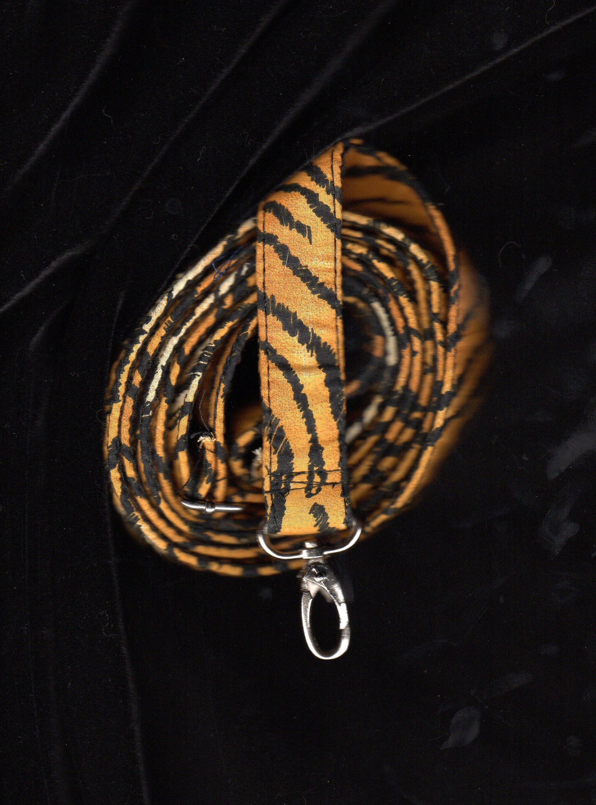Kitty Holster Leash 1/2' X 6' - Matches the Tiger Kitty Holster