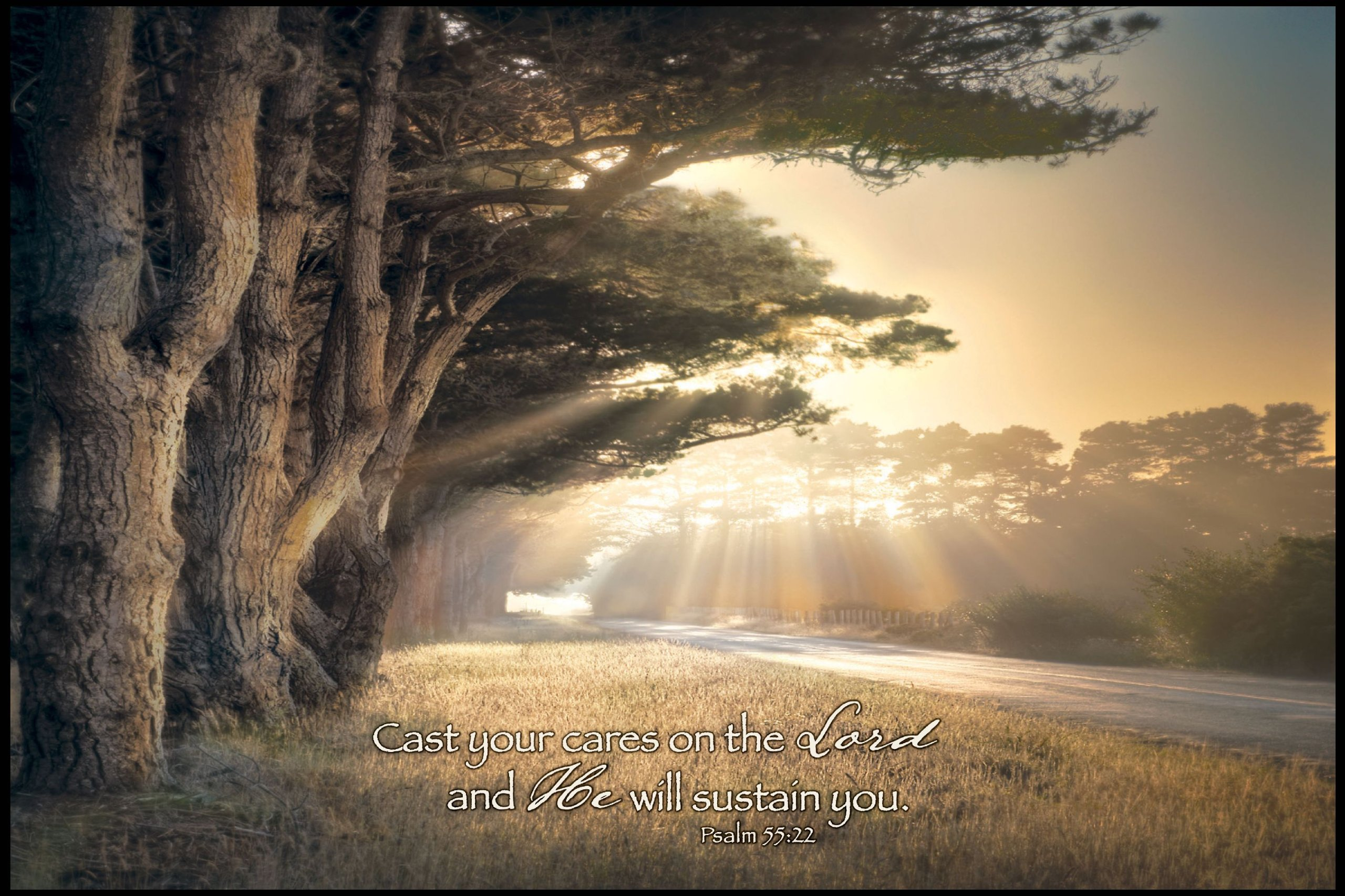 Trees in Radiant Light P Graham Dunn Inspirational Print on Wood Wall Plaque Featured Verse - Cast Your Cares on the Lord and He Will Sustain You. Psalm 55:22 - Size 36 x 24 in. by P Graham Dunn