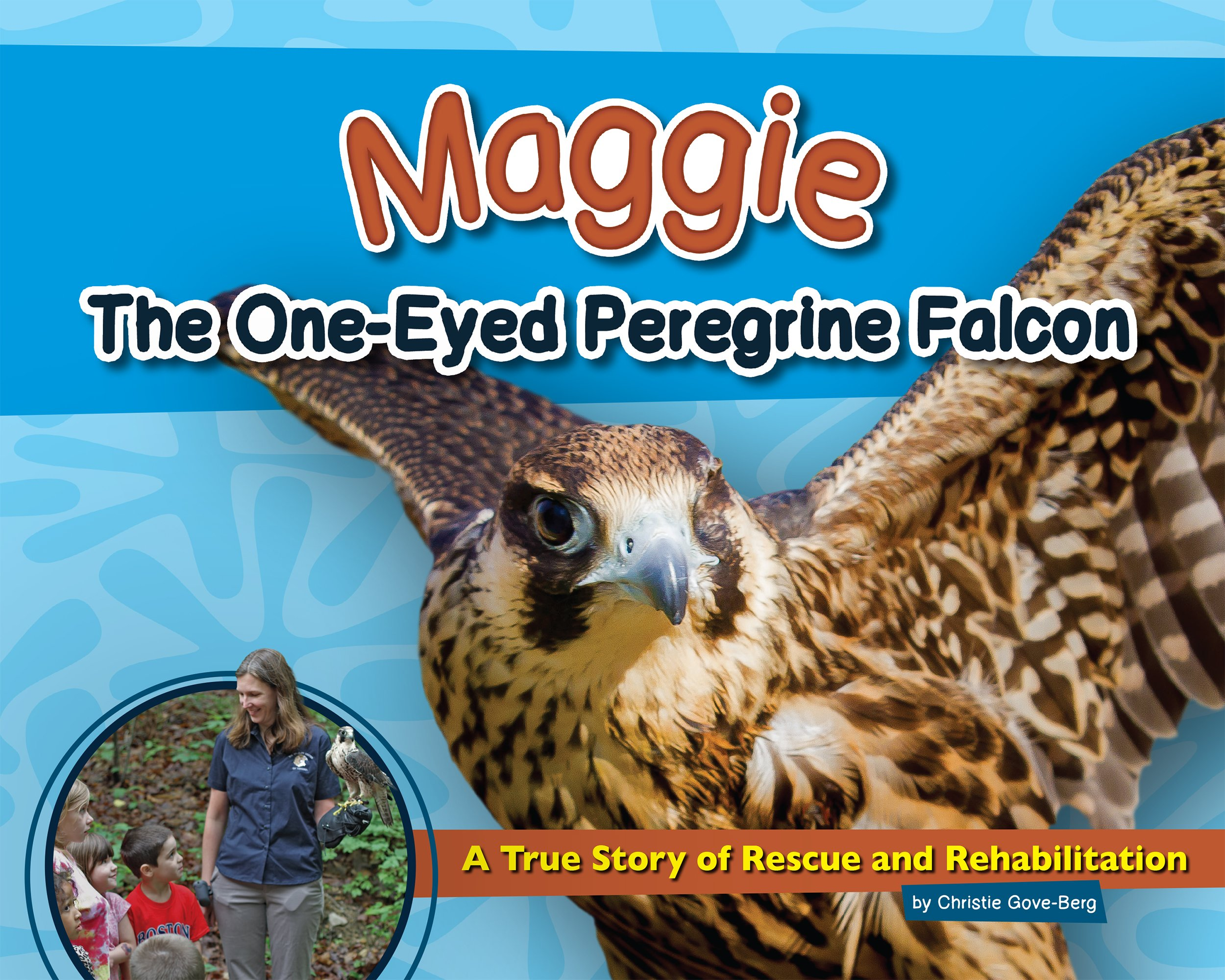 Download Maggie the One-Eyed Peregrine Falcon: A True Story of Rescue and Rehabilitation (Wildlife Rescue Stories) pdf epub