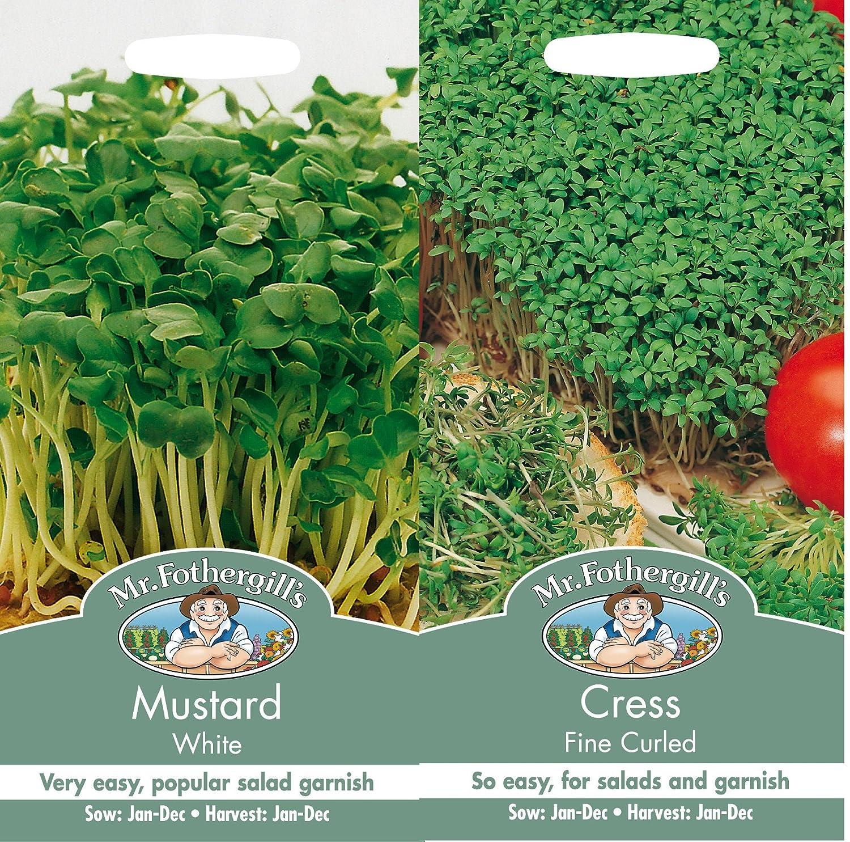 Mr Fothergills Mustard & Cress Seed (1)