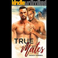 True Mates: A Gay Shifter MPREG