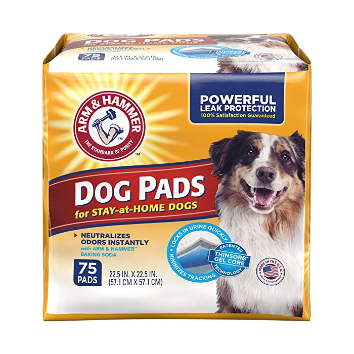 Top 9 Arm And Hammer Puppy Training Pads