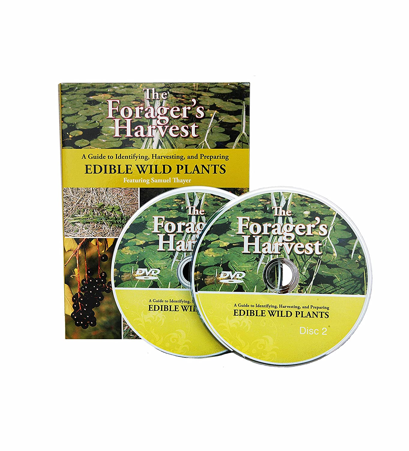 Amazon.com: The Forager's Harvest DVD: A Guide to Identifying, Harvesting,  and Preparing Edible Wild Plants: Samuel Thayer: Movies & TV