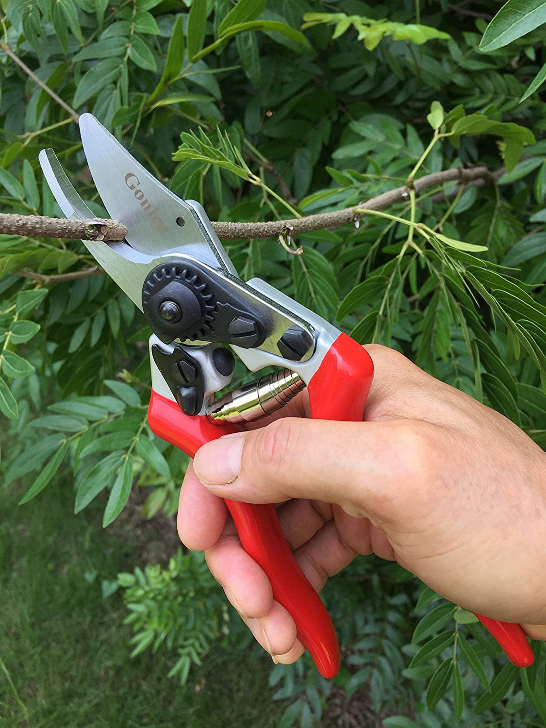 Gonicc Pruning Shears For Smaller Hands