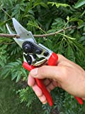 gonicc Professional Sharp Bypass Pruning Shears