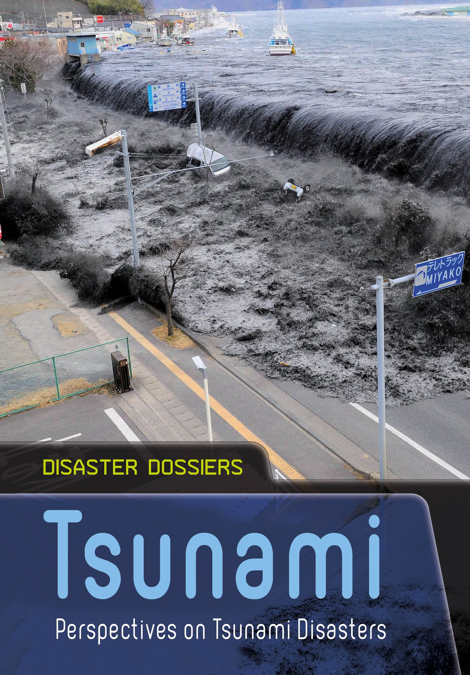 Tsunami: Perspectives on Tsunami Disasters (Disaster Dossiers) ebook