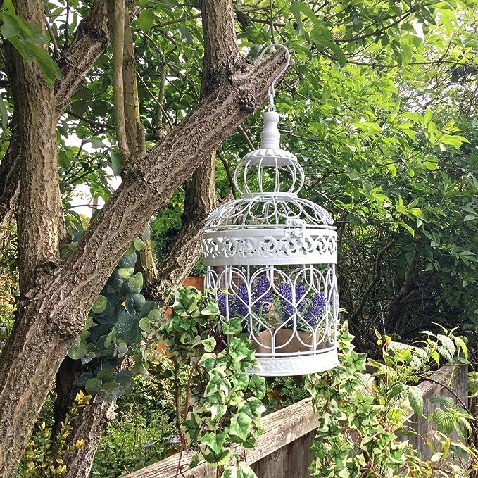 Estilo Vintage blanco metal para colgar pajarera jardín maceta flores Pot Holder: Amazon.es: Jardín