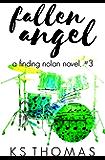 Fallen Angel (A Finding Nolan Novel Book 3)