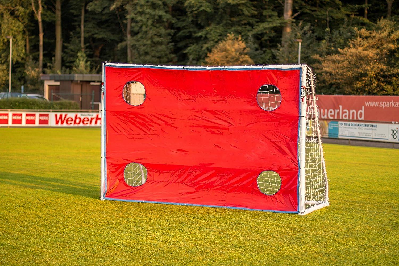 Torwand Für Fußballtore Oder Handballtore In Verschiedenen Größen 4