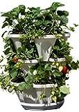 3 Tier Stackable Herb Garden Planter Set - Vertical Container Pots For Herbs, Strawberries, Flowers & More.