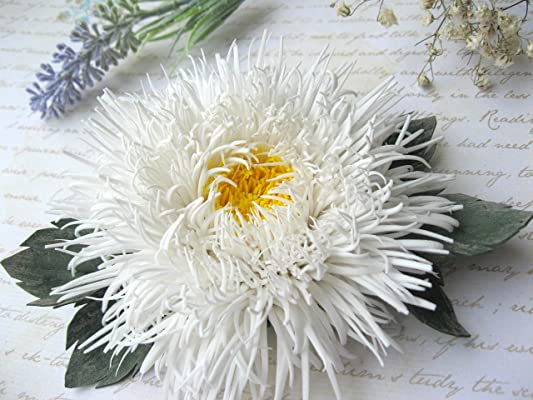 Large white flower hair clip Aster
