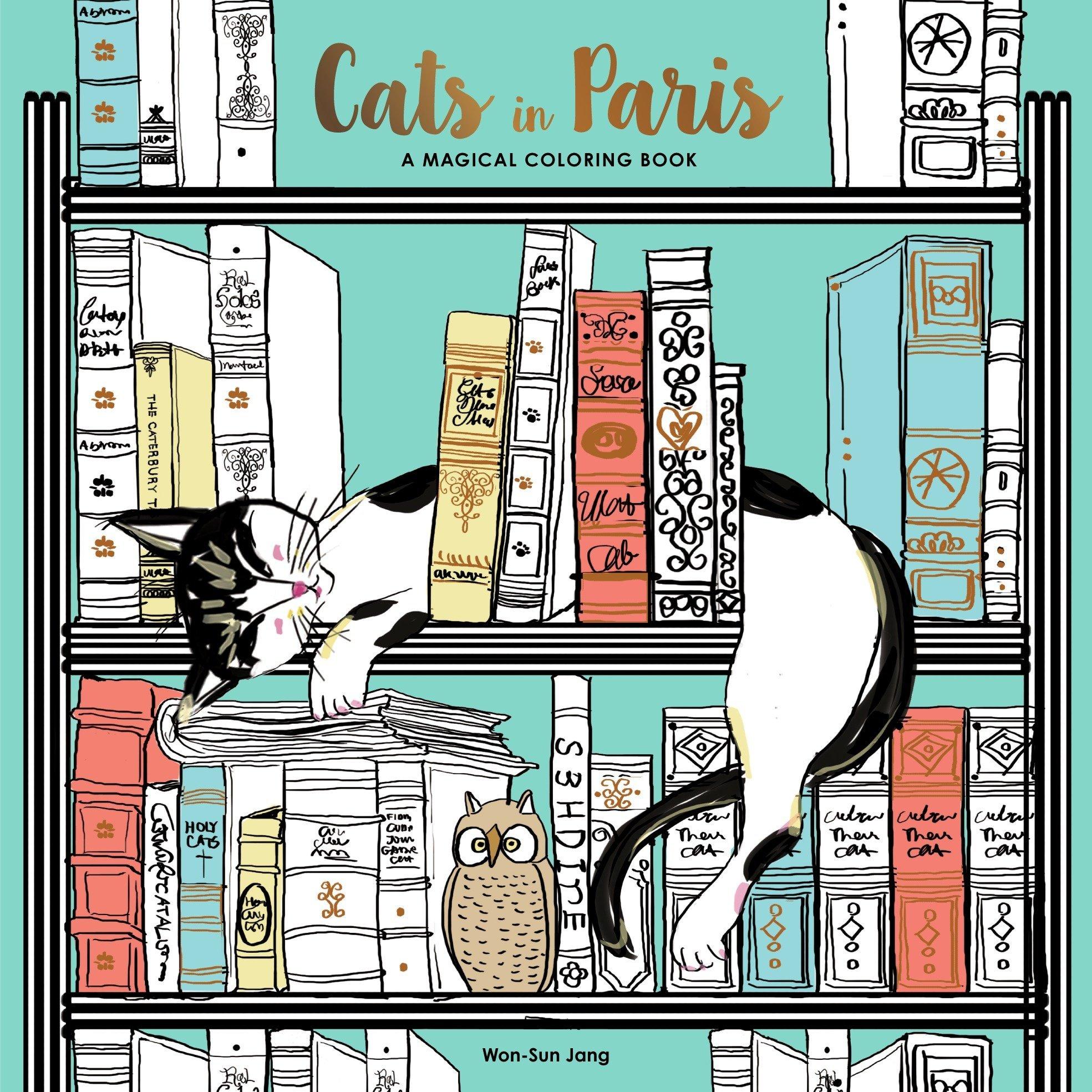 Amazon.com: Cats in Paris: A Magical Coloring Book (9780399578274 ...