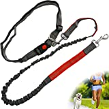 Zenify Hands Free Dog Lead for Running, Walking, Hiking, Canicross Dual Handle Comfortable Waist Belt Band Reflective Stitching Adjustable Bungee Length Extendable Leash (Grey/Red)
