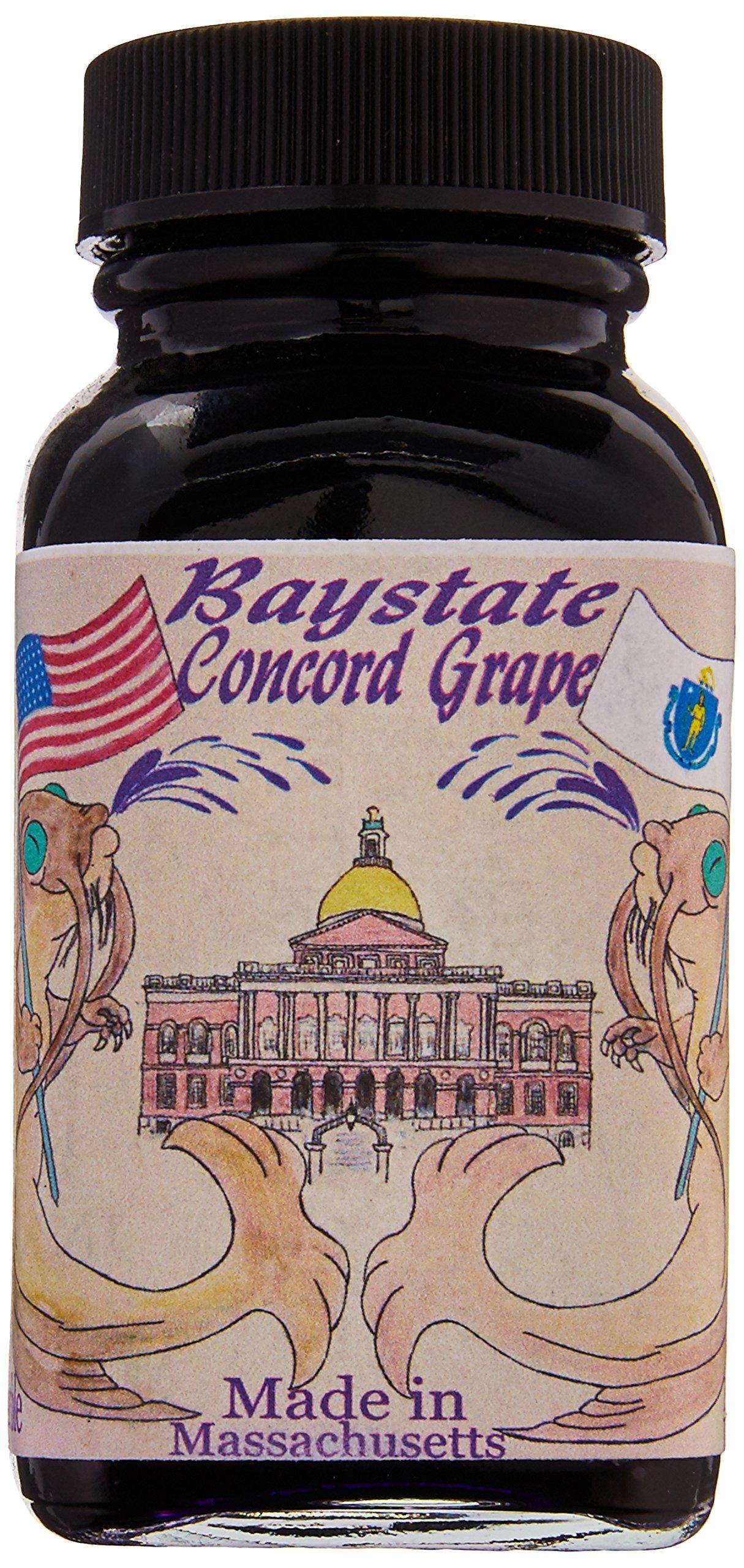 Noodler's Ink Concord Grape Bottled Ink Refill