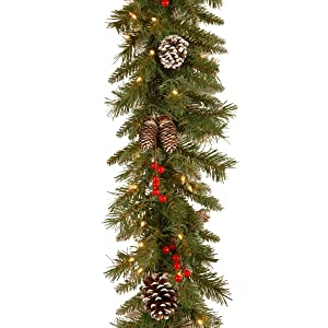 National Tree 9 Foot by 10 Inch Frosted Berry Garland with 100 Clear Lights (FRB-9GLO-1)
