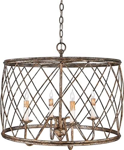 Quoizel RDY2823CS Dury Cage Drum Pendant Lighting, 4-Light, 240 Watts, Century Silver Leaf 20 H x 23 W