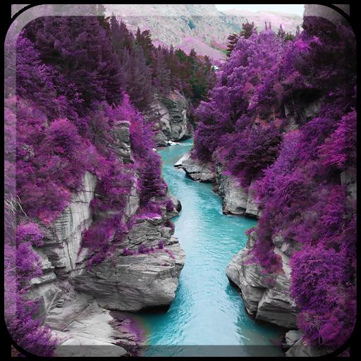 purple nature amazon android