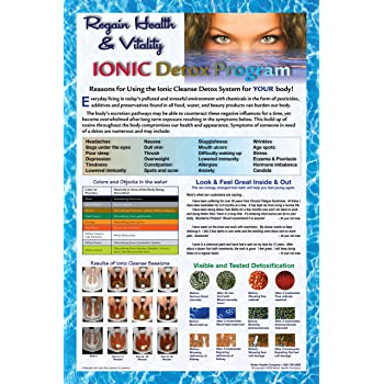 LARGE SIZE 24 X 36, Ion Detox Ionic Foot Bath Spa Chi Cleanse Promotional Poster. Increase your Detox Foot Spa Sessions and Increase Income.
