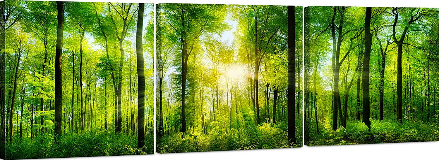 Canvas Wall Art Decor - 3 Piece Set - Large Decorative & Modern Multi Panel Split Prints for Dining & Living Room, Kitchen, Bedroom & Office (5201 - Forest, 16x16 3 Piece)