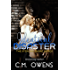 Identical Disaster (The Sterling Shore Series Book 8)