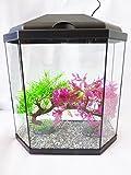Vision Aquarium 30, Complete Fish TAnk With L.E.D Light & Filtration System (Vision Aquarium 30)