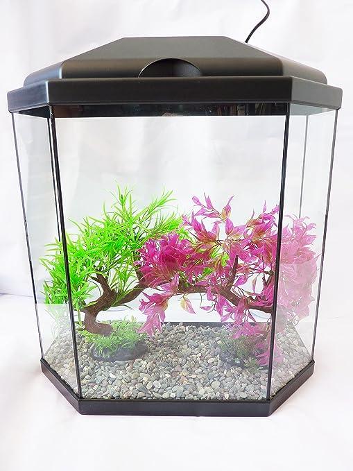 Visión Acuario 30, completo, tanque de peces con luz LED, y