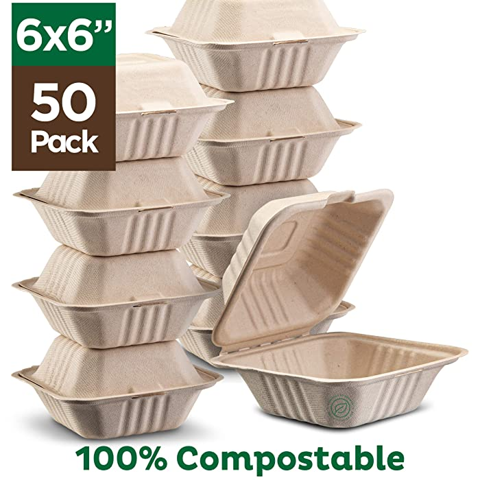 The Best Biodegradable Food Box