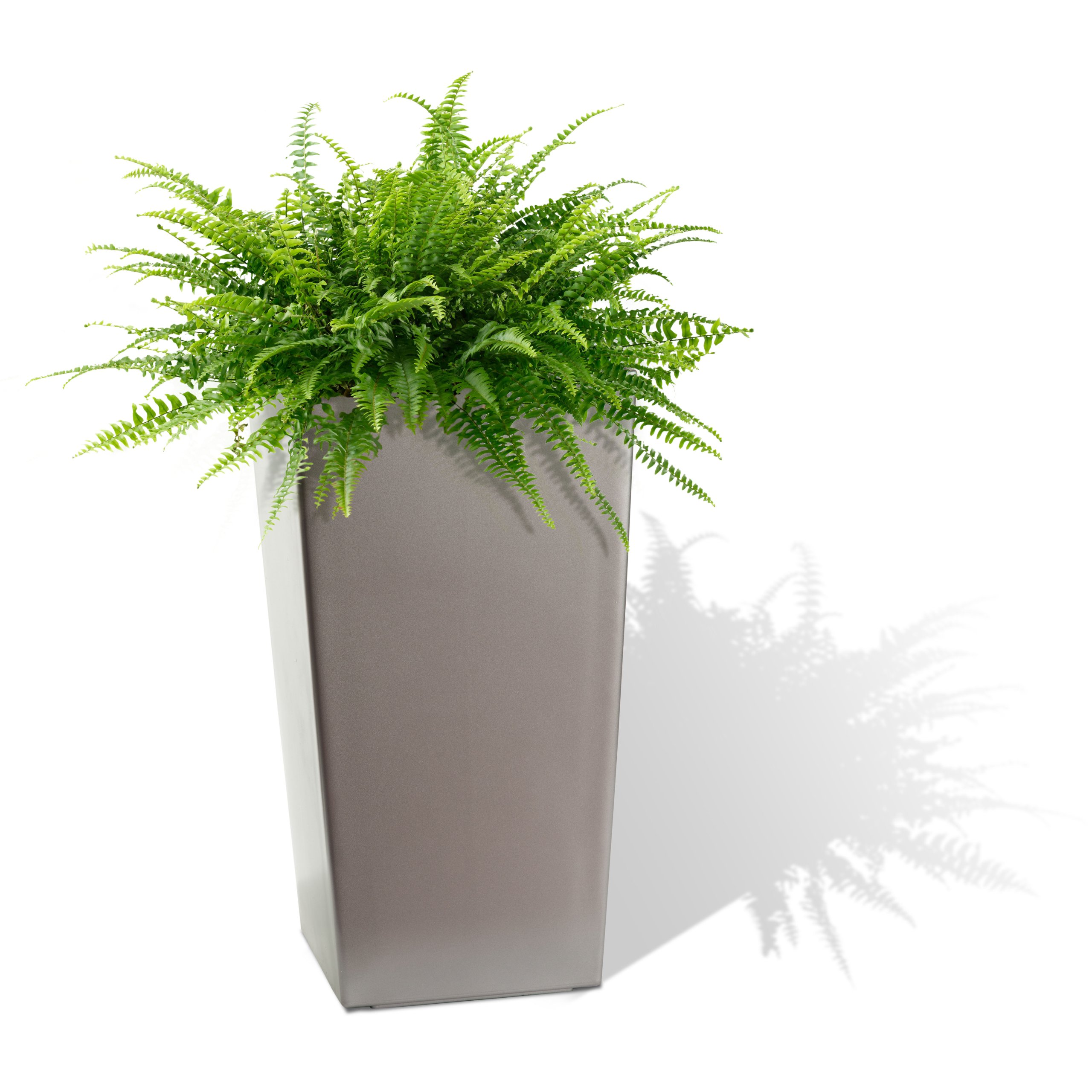 Algreen 11205 Self Watering Square Modena Planter, 30-Inch, Matte Granite by Algreen