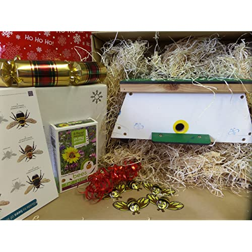 Bumble Bee Gift Box  Great Gift For Gardeners And Nature Lovers