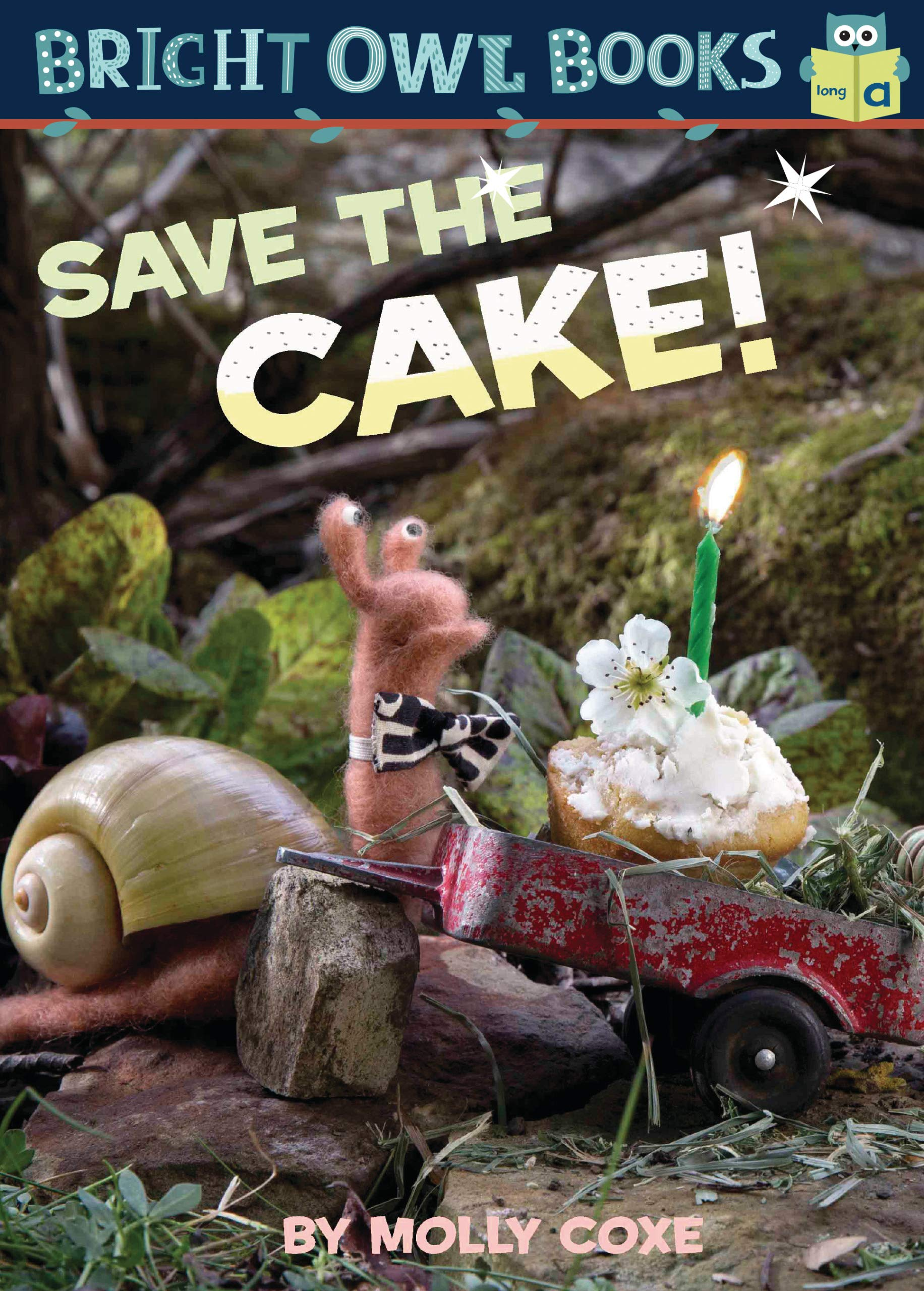 Save the Cake!: Long Vowel a (Bright Owl Books)