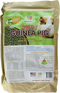 product image for American Pet Diner Alffy Guinea Pig Food 3 Pound