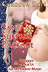 Santa's Surprise Package: A Sexxxy Santa Tale of Holiday Magic (Naughty & Nice Book 3) Kindle Edition